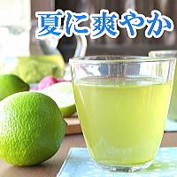柑橘系ベルガモットが爽やかに香る、アールグレイタイプの水出し緑茶ティーバッグ 1,280円 送料無料