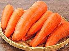 【産地も選べる】国産無農薬・無化学肥料栽培の安心安全なにんじん10kg
