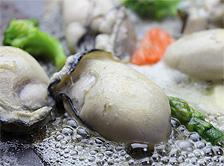 リピーター続出のジャンボ広島カキどっさり1kg送料無料で食べ放題!