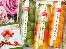 目を引く美しさ\まるで果実の宝石箱/上品な甘みのジュレ入フルーツコンポートセット