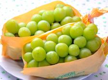 【送料無料】皮ごと食べれるブドウ♪山梨・長野産 大房シャインマスカット2キロ