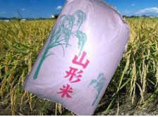 玄米 はえぬき 30kg