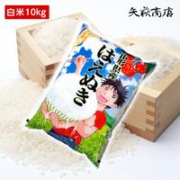 【送料無料・精米無料】1年産山形県産はえぬき白米10kg