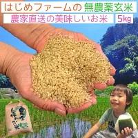 無農薬玄米5kg