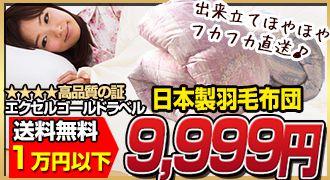 エクセルゴールドラベル日本製羽毛布団→9,999円
