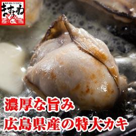 スーパーには売っていない大粒の牡蠣が食べ応え充分!約30粒前後