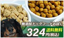 愛犬の食事、大丈夫ですか?