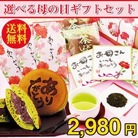 選べる母の日ギフト!静岡産のできたてホヤホヤ新茶をお届け!