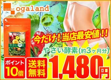 【サプリ専門店オーガランド】やさい酵素(約3ヶ月分)