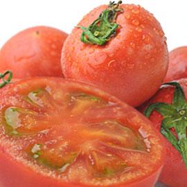 ポイント2倍!高糖度で濃厚、希少な茨城県産完熟フルーツトマト