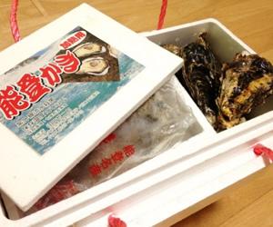 能登牡蠣とむき身 (殻付能登牡蠣20個むき身500g)