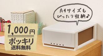 A4サイズもスッキリ!1,000円ポッキリ送料無料